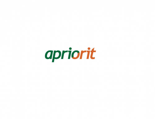 Junior Full Stack Developer (ASP.NET)